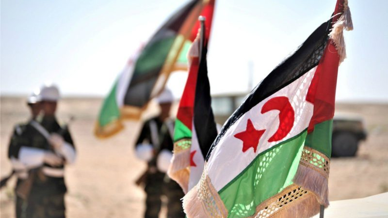 What is the Polisario Front and who is Brahim Gali?