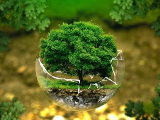 How to contribute to the care of the planet and the environment from the hospital sector