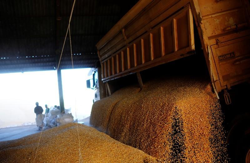 Rabobank lowers Brazil 2020/21 corn harvest forecast to 89.5 million T, raises estimate for soybeans