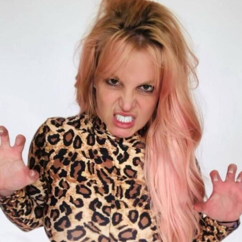 Strict rules of guardianship that Britney Spears father has over her come to light