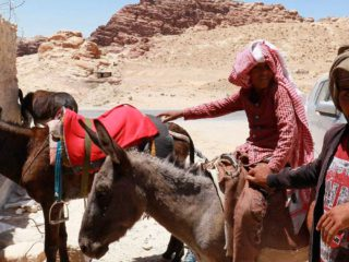 The pandemic paralyzes tourism in Jordan and threatens to kill donkeys in the city of Petra
