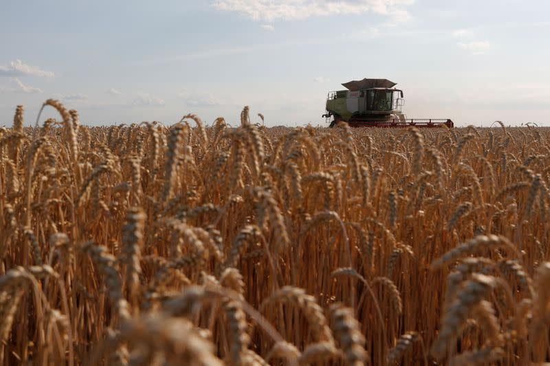Ukraine starts 2021 cereal harvest