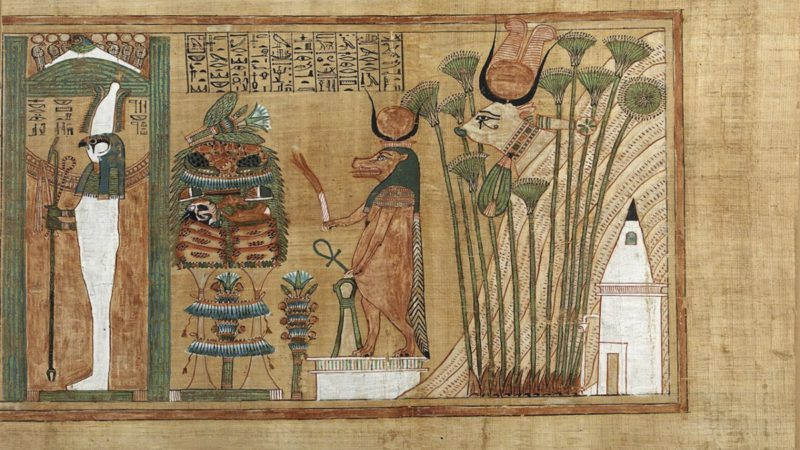 What were the favorite pets in Ancient Egypt?
