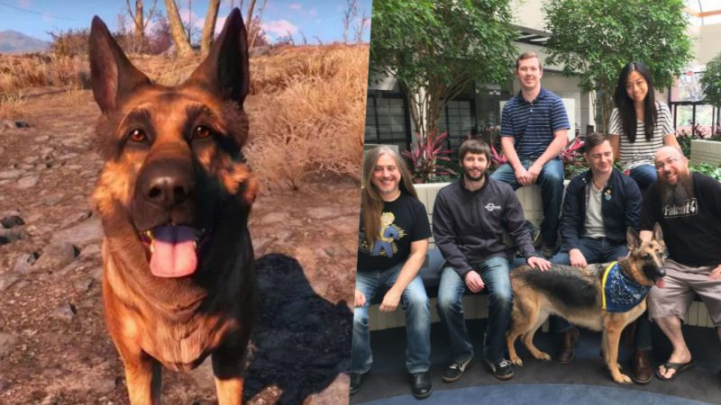 Fallout 4: Bethesda donates money in honor of the deceased dog who played Meatball
