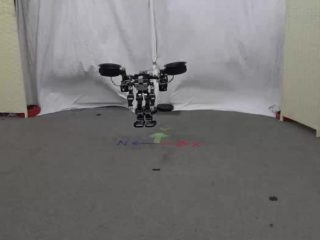 Humanoids: When humanoid robots take off and submerge