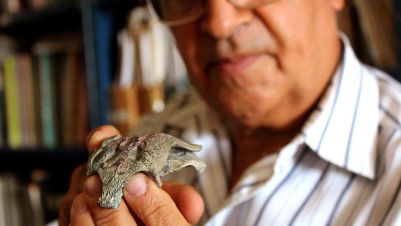 """Paleontólogos chilenos y argentinos descubren restos del """"abuelo"""" de los cocodrilos modernos de 148 millones de años"""