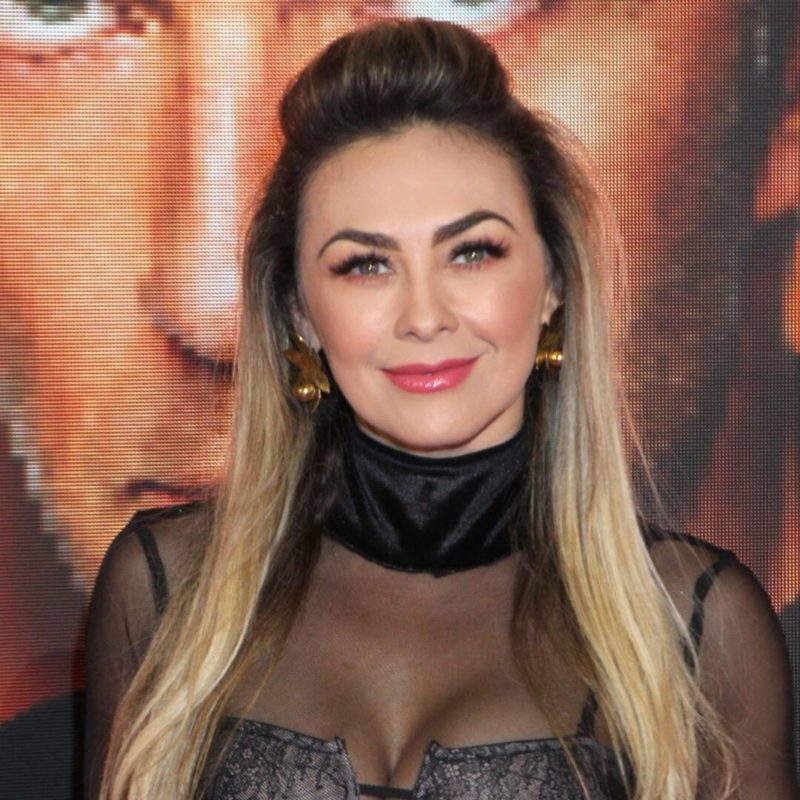 Aracely Arámbula's furious reaction after publishing several photos of her son Daniel