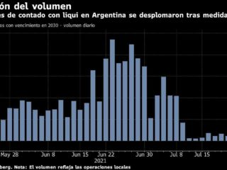 Argentine bond operations down by measure against Blue: Chart