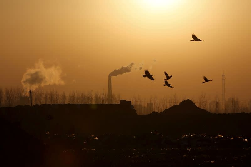 China launches pilot program to assess carbon emissions in new industrial projects