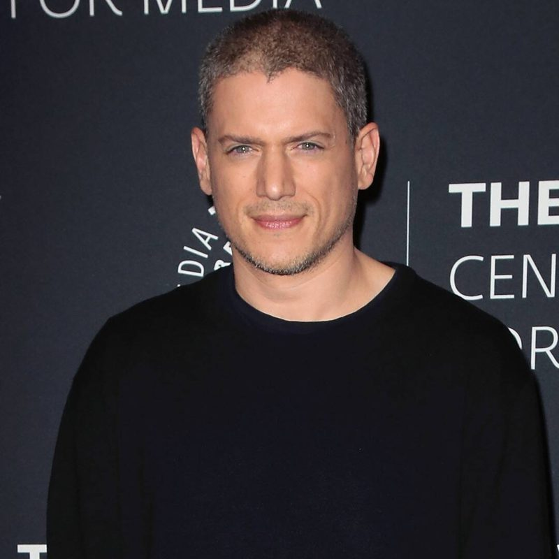 Prison Break's Wentworth Miller Revealed He Was Diagnosed With Autism