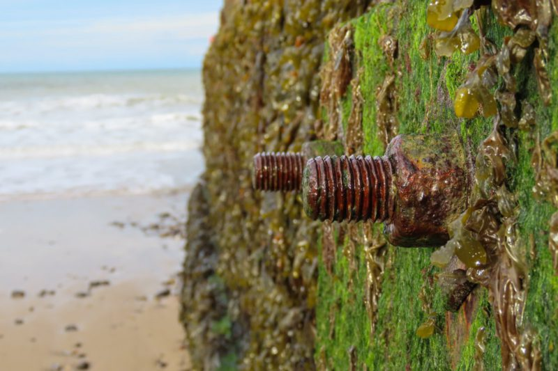 Programming language: Rust 1.54 extends the connection to WebAssembly