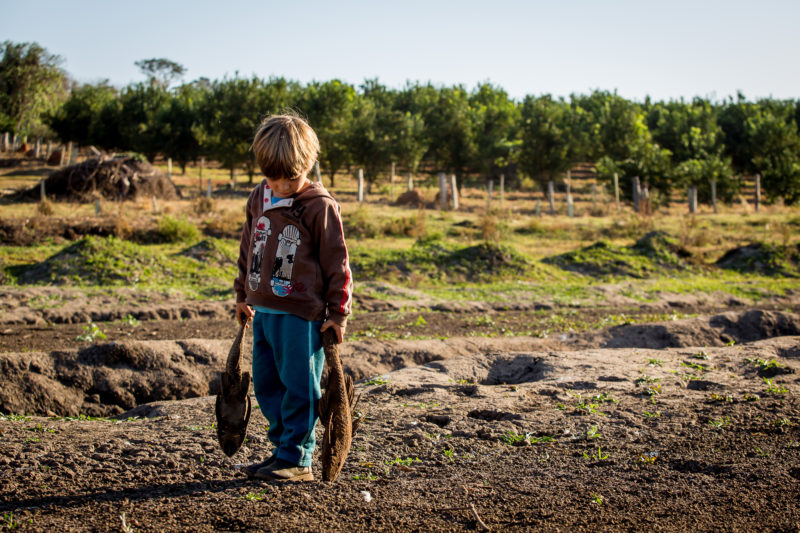 The richest state in Brazil dries up