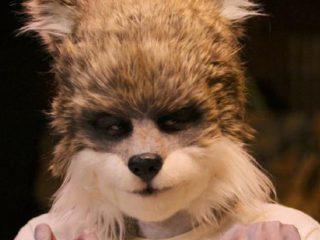 """Sexy Beasts"", will season 2 have on Netflix?"