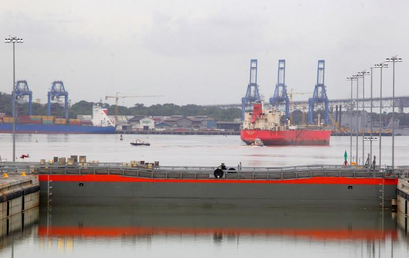 Panama Canal limits traffic and speed of vessels to care for whales