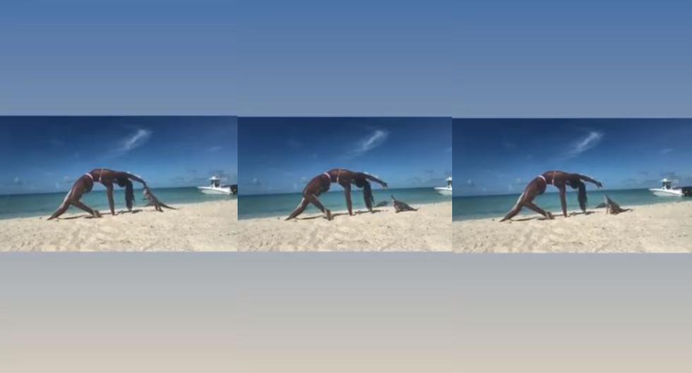 Yoga teacher is bitten by an iguana in full virtual class