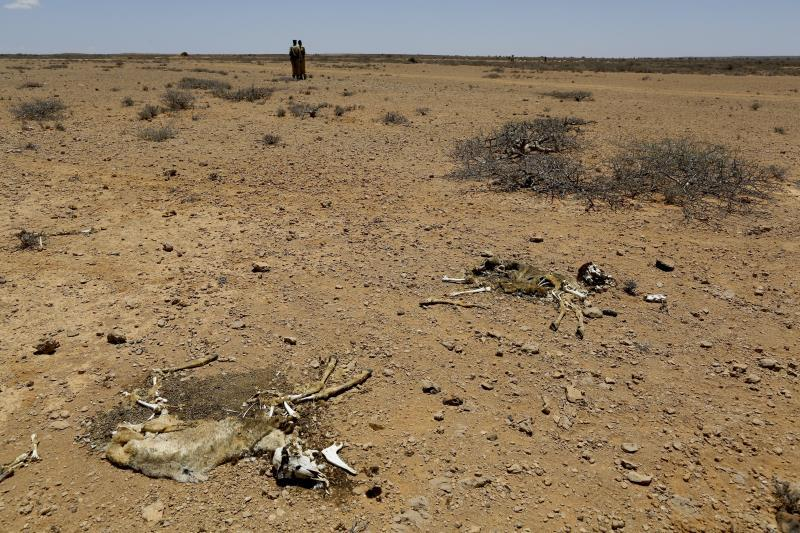 Study on prayers reveals 3,500 droughts in 11 countries in 650 years