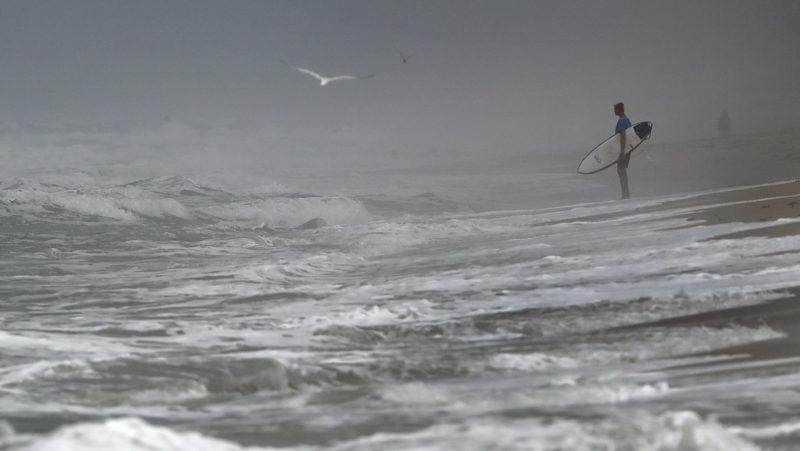 VIDEO: Un tiburón ataca a un adolescente en una playa de Florida conocida como 'la capital mundial' en mordeduras de escualos