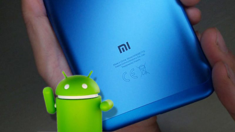 Estos son los móviles de Xiaomi que no recibirán Android 12
