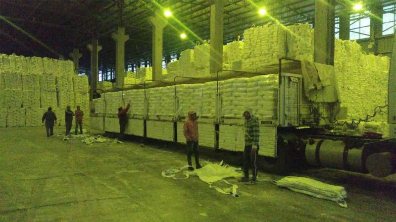 After 15 years, 50 millers will send wheat flour to Cuba and aim to export US $ 250 million