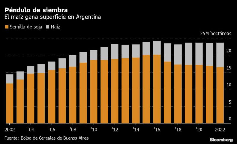 By climate, Argentina leans towards corn: Graph (Correction)