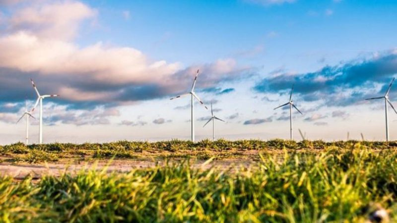 The World Alliance for Sustainable Energy is born
