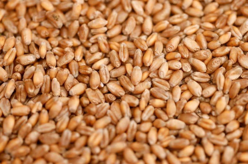 Ukraine's grain exports up 12.1% so far this season 2021/22