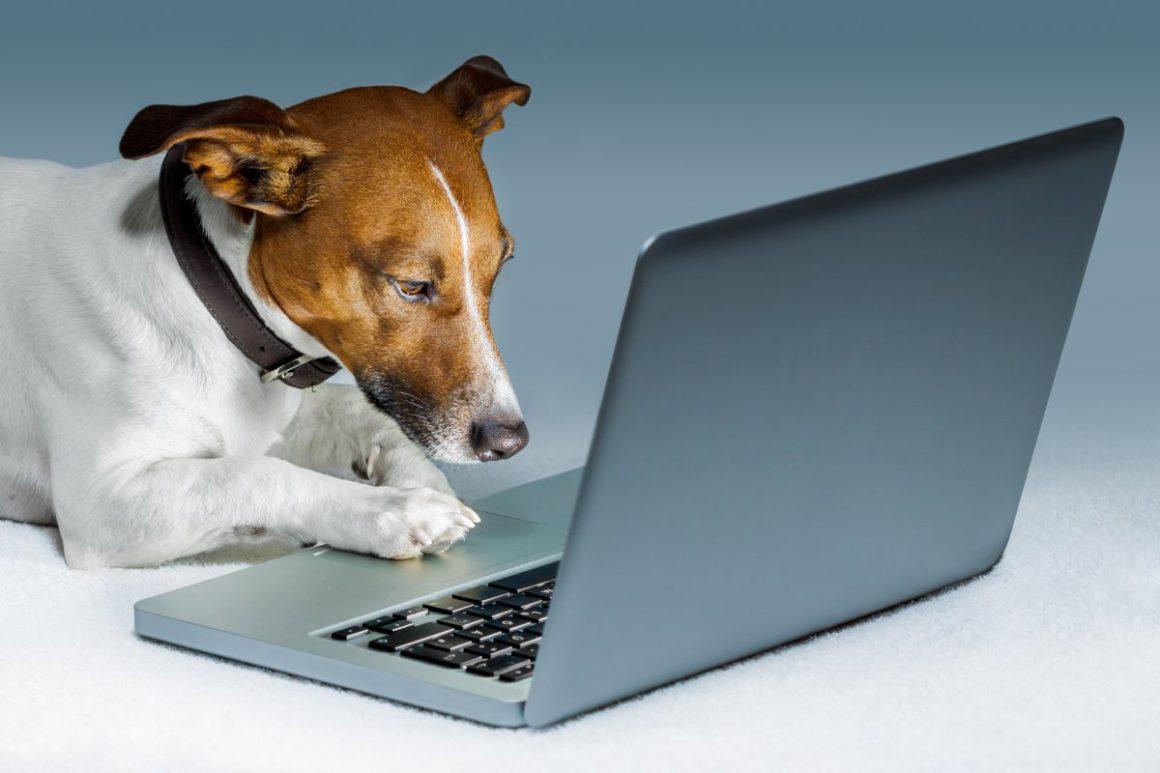 Datadog: performance monitoring during testing