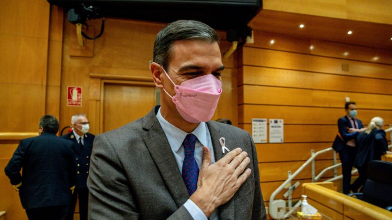 Seven organizations confirm that Sánchez's accounts are 'fake'