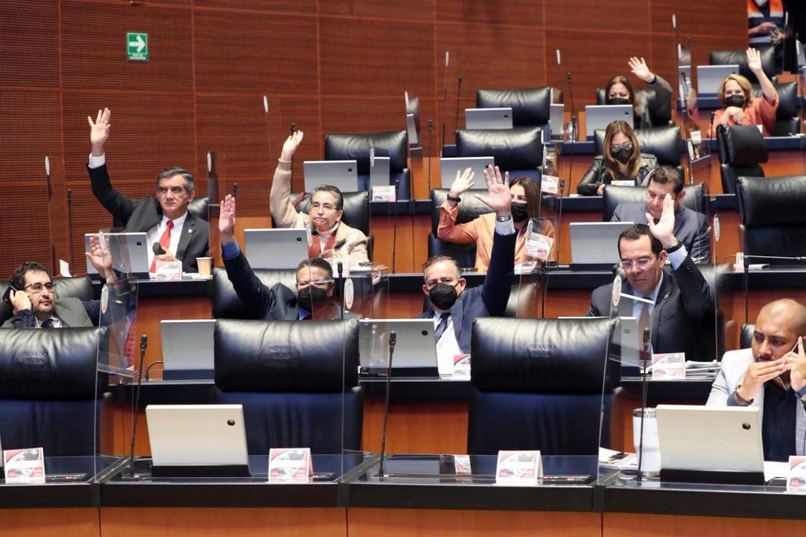The Mexican Senate abolishes VAT on feminine hygiene products