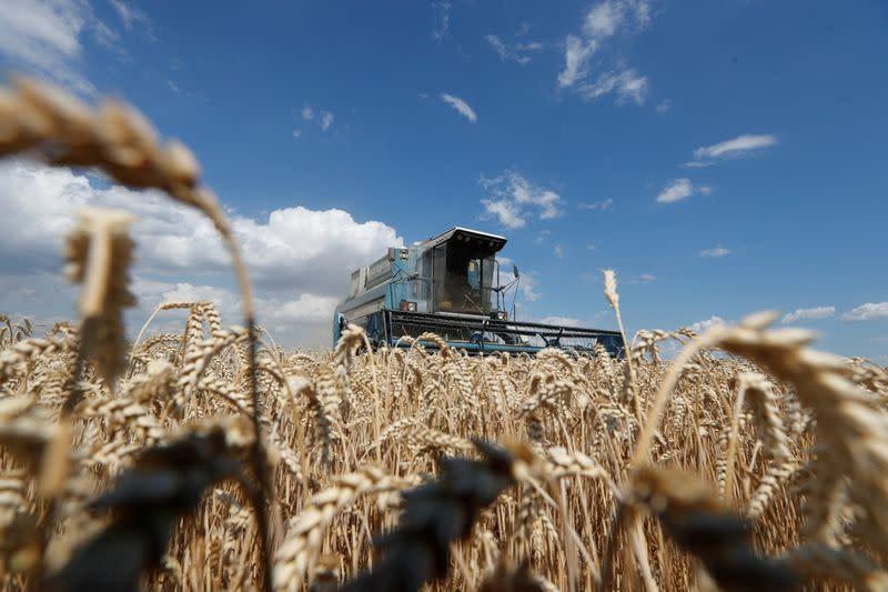 Ukraine raises export quota to 25.3 million tons of wheat in 2020/2022